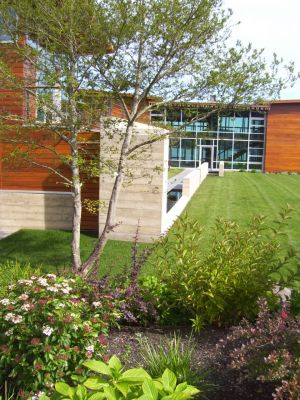 Then endpoint of a linear water feature is punctuated by a mature tree and softened by loose, low plantings