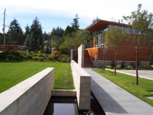 The endpoint of a linear water feature is punctuated by a mature tree and softened by loose, low plantings