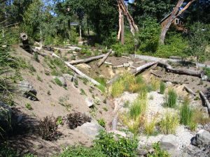 An on-site detention pond stores and filters storm water while providing wildlife habitat.