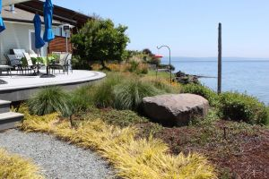 The meandering path leads to a curving deck that takes full advantage of the site and the views of Puget Sound