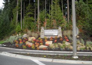 Bangor Creek Neighborhood Monument native and drought tolerant plantings provide year round interest