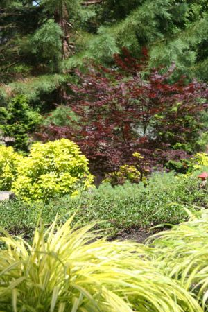 The many colors, textures, and heights of plantings add to the aesthetic character and year-round interest of the garden