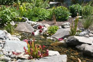 The gently running water soothes and helps the garden engage all of the senses
