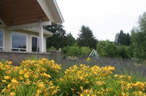 Large swaths of edible herbs and perennials anchor the house in the landscape