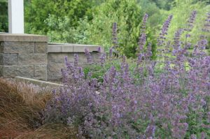 Seat walls border a paved patio and are made welcoming by adjacent fragrant herb gardens