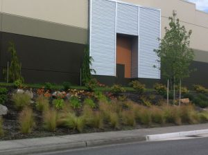 Layered plantings along the side of the building and site create a more inviting facade