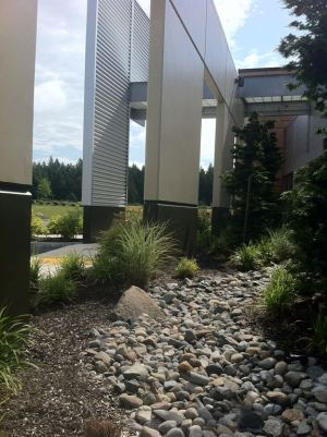 Storm water is exposed and filtered by a dry river bed at the building's entry